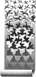 Maurits Cornelis Escher - voluta