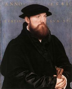 Hans Holbein The Younger - De Vos Van Steenwijk