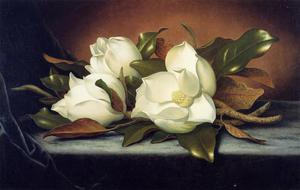 Martin Johnson Heade - Magnolias gigantes