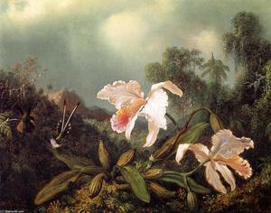 Martin Johnson Heade - Jungle Orquídeas y colibríes