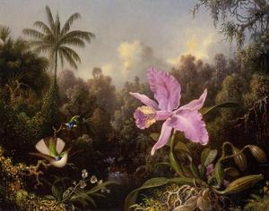 Martin Johnson Heade - Orquídea y Dos Hummingburds