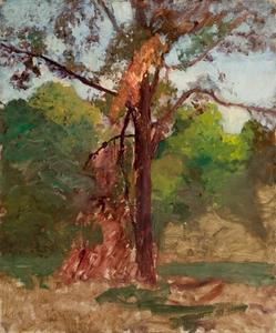 Theodore Clement Steele - a árbol