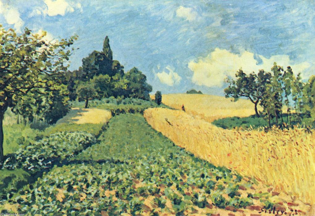 Grain fields on the hills of Argenteuil, 1873 de Alfred Sisley (1839-1899, France) | Copia De La Pintura | WahooArt.com