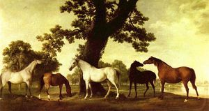 George Stubbs - Cinco Brood Mares