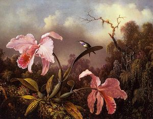 Martin Johnson Heade - Orquídeas y Hummingbird