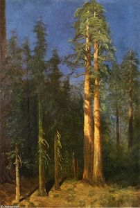 Albert Bierstadt - secoyas de california