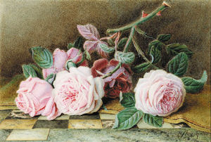 William Hough - Still-life de color rosa rosas en Un Canica Rematada Tabla