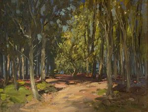 William Bradley Lamond - bosque pista