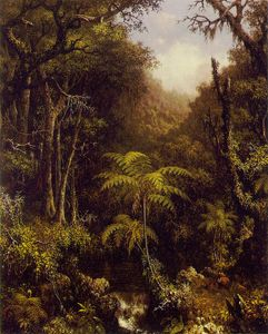 Martin Johnson Heade - Forestal Brasileño