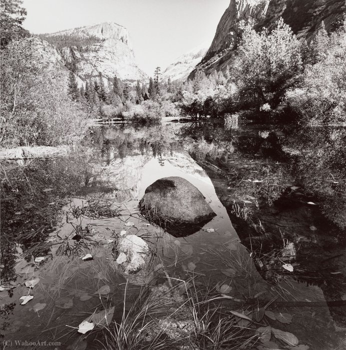 Parque Nacional de Yosemite, California de Lee Friedlander