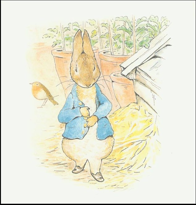 Peter conejo 10a - (11x11) de Beatrix Potter (1866-1943)
