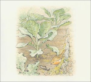 Beatrix Potter - Peter conejo 13a - (11x11)