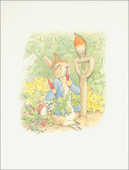 Peter conejo 1a - (11x13) de Beatrix Potter (1866-1943)