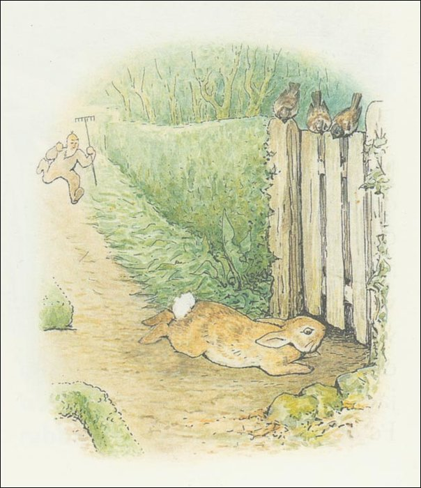 Peter conejo 27a - (11x12) de Beatrix Potter (1866-1943)