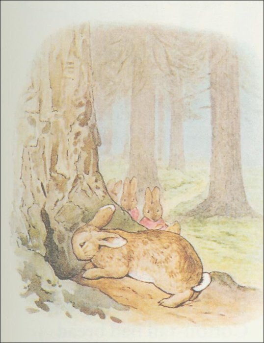 Peter conejo 29a - (11x13) de Beatrix Potter (1866-1943)
