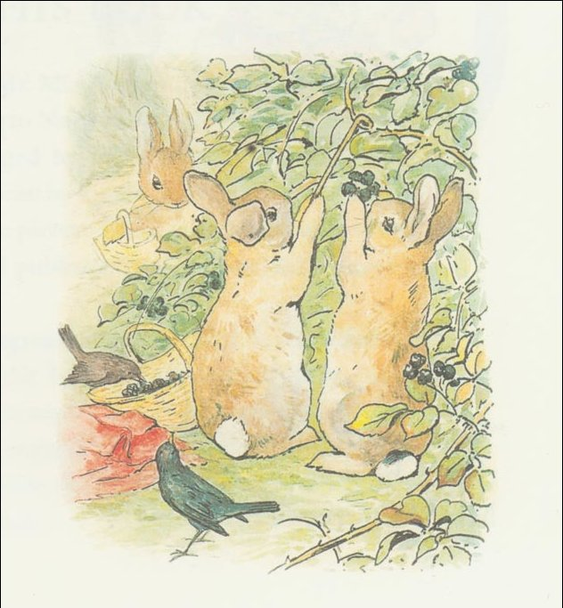 Peter conejo 7a - (11x11) de Beatrix Potter (1866-1943)