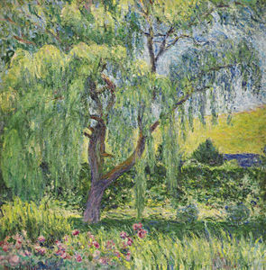 Blanche Hoschedé-Monet - Giverny, Willow y Rosas