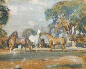 Alfred James Munnings - Estudio de 'Rose' , 'Wild Bird' , 'Peggy' asícomo 'Stockings'