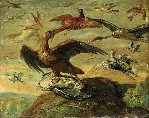 Jan Van Kessel The Elder - pájaros
